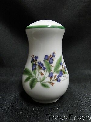 "Royal Worcester Worcester Herbs: Salt OR Pepper Shaker, 1 Hole, 3 3/8"", Sage"