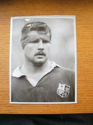 1989 British Lions Press Photo: Young, David (Wales) Portrait In Kit [6x8] . No