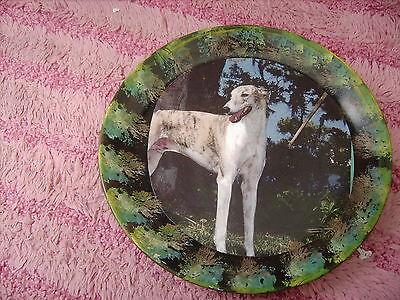 Greyhound  2     On A Decoupage  Plate