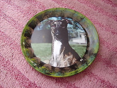 Greyhound       On A Decoupage  Plate