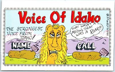 "Vintage QSL Postcard Ham Radio Card VOICE OF IDAHO Artist-Signed ""Hustler #15"""