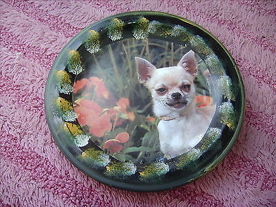 Chihuahua   Short   On A Decoupage  Plate