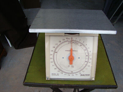 Salter 187 - 30kg Weighing Scales