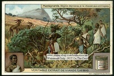 Native Damaras Africans Hunt Antelope Chasse Aux Antiliopes 1910 Trade Ad Card