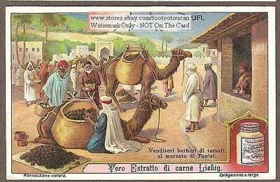 Arab Truffle Merchants With Camels Desert Middle East c1910 Trade Ad Card