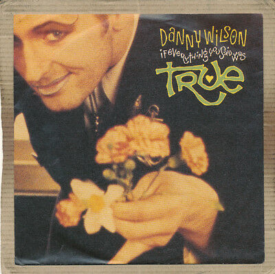 """7"""" Single - Danny Wilson, If Everything You Said Was True"""