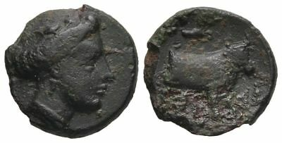 Ancient Greece  4-3 cent BC EUBOEA HISTIAIA NYMPH GRAPE BUNCH BULL