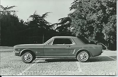 Ford Mustang MkI Original Photograph Excellent Condition