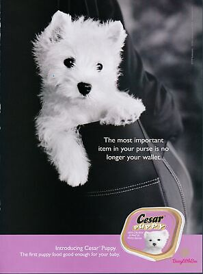 Print Ad~2004~Cesar~Puppy Dog Food~West Highland Terrier~Advertisement~H400