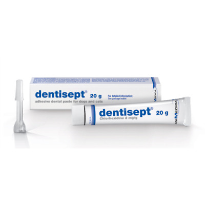Dentisept Adhesive Oral Paste 20g