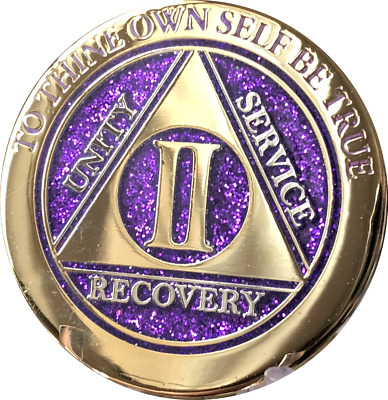 2 Year AA Medallion Elegant Glitter Purple Gold Plated Sobriety Chip Coin II Two