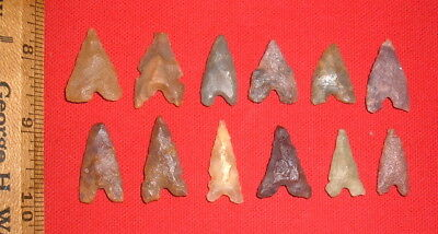 (12) Fine Sahara Neolithic Algerian Style Points, Prehistoric African Artifacts