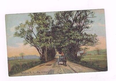 "NH Nashua New Hampshire antique db post card ""The Willows"""
