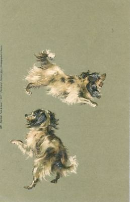 RARE Old Tuck's Postcard 2 Japanese Chin Dogs Toy Spaniels Prussia 1903 Embossed