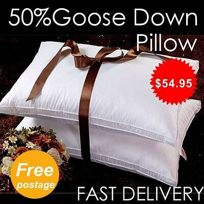 Luxury >>Twin Pack<< 50% White Goose Down Pillow 350TC Cotton Cover - 48x73cm