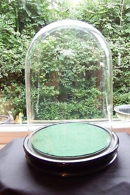 Antique Victorian Display Glass Dome and Base #2