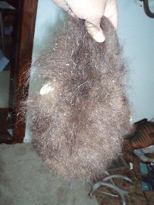 bison scrotum JUMBO real buffalo Ball bag oddity gag gift nut sack hairy bag B3