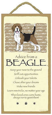 ADVICE FROM A BEAGLE dog puppy INSPIRATIONAL SIGN wood NOVELTY PLAQUE hound NEW
