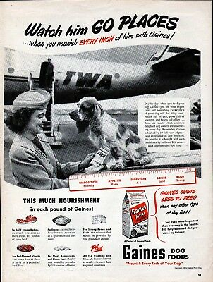 1949 Gaines Dog Food TWA Airlines Stewardess & Dog Traveler Ad