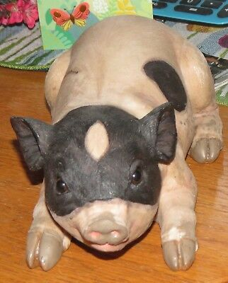 Transpack Resin Pig On Belly
