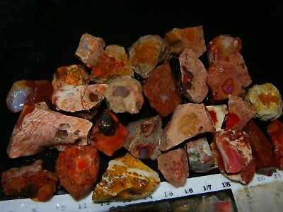 Nice Larger Mexican Fire Opal Rough/Specimen Lot 957cts Half have some Fires NR