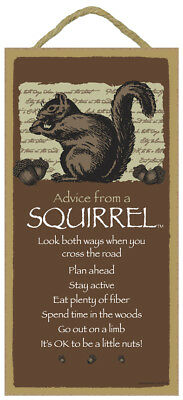 ADVICE FROM A SQUIRREL wood INSPIRATIONAL SIGN wall hangng NOVELTY PLAQUE Animal