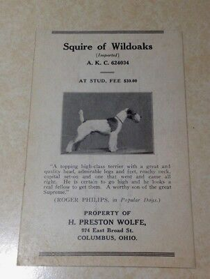 Vintage Wire Fox Terrier Dog Breed Pedigree Card