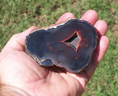 Bob Hicks Ranch Old Stock Argentina Red Crater Ryolite Agate Coral Lapidary Rock