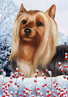 Large Indoor/Outdoor Winter Flag - Silky Terrier 15102