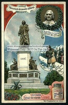 Monument To Linne Swedish Naturalist Biology Scientist 1903 Trade Ad Card