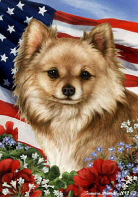 Large Indoor/Outdoor Patriotic I Flag - Longhaired Chihuahua 16145