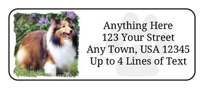 60 Sheltie #2 Dog Puppy on White GLOSSY Photo Quality Return Address Labels