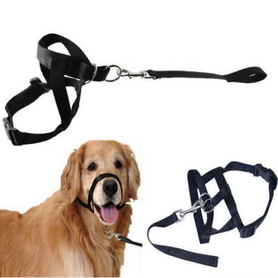 Dog Training Collar Head Halter Gentle Adjustable Leader Muzzle Harness