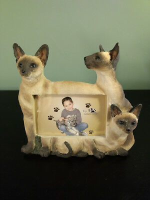 """E&S Imports """"CAT"""" PICTURE FRAME Siamese Holds 4X6 Picture"""