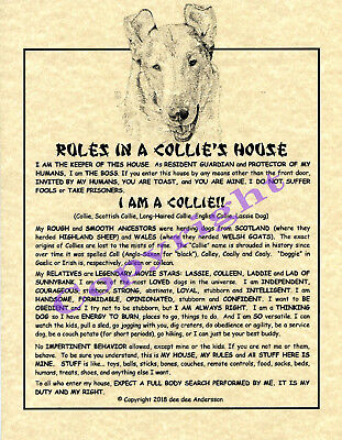 Rules In A Collie's House