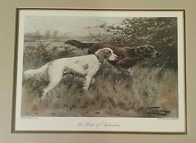 First of September Two English Setter Dogs Steel Engraving George Wright FRAMED