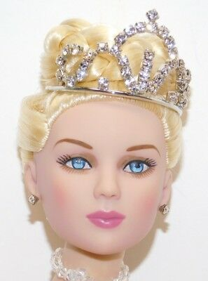Cinderella Doll ~ 2014 Tonner Convention Exclusive ~ Le 150 ~ New