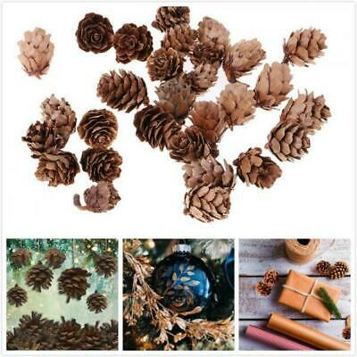 30 Pcs Mini Natural Dried Pine Cones In Bulk For Accents Ornament Christmas