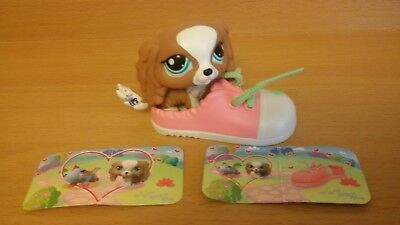 Littlest Pet Shop Special Edition King Charles Spaniel Puppy Dog In Shoe #1385