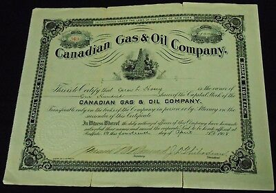Canadian Gas & Oil Company Capital Stock Certificate 100 Shares