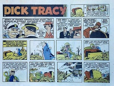 Dick Tracy by Chester Gould - large half-page color Sunday comic, Sept. 1, 1974