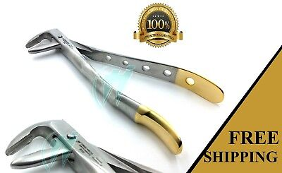 Premium Grade  Lower Root Tip &molars Dental Extracting Forceps #859 Gold Handle