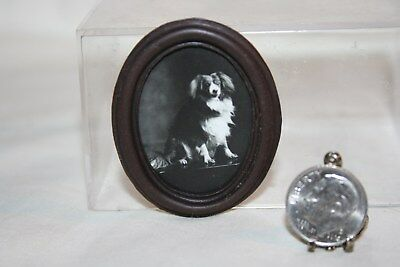 """Miniature Dollhouse """"Antique"""" Real Photo Portrait of Dog King Charles Spaniel?"""