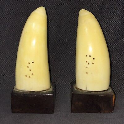 1890's Faux Resin Whale Tooth Pair Salt & Pepper 3-1/2 Inches Each