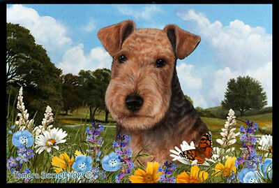 Indoor/Outdoor Summer Floor Mat - Lakeland Terrier (TB) 39234