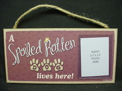 DOG PHOTO Wall PLAQUE A Spoiled Rotten WOOD SIGN wooden picture frame Puppy NEW