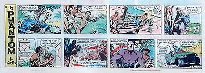 The Phantom by Lee Falk & Sy Barry - lot of 12 color Sunday pages - middle 1978