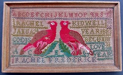 Antique Victorian 1883 Sampler With Many Stitches In Wood Frame With Provenance