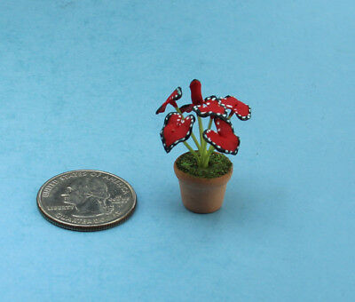 Very Nice 1:12 Scale Dollhouse Miniature Potted House Plant #FL015R