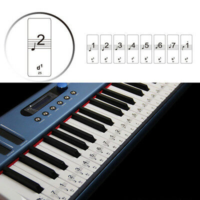 New! 88-Keys Piano Keyboard Laminated-Sticker Set Kit Educational Kids Toys